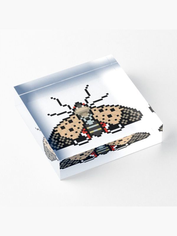Spotted Lanternfly Acrylic Block