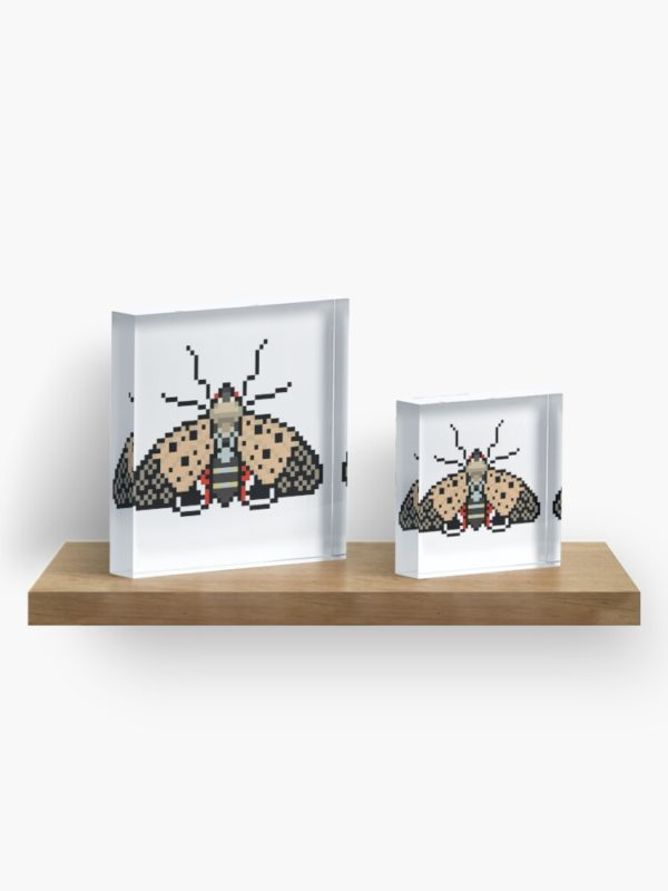 Spotted Lanternfly Acrylic Blocks on Shelf