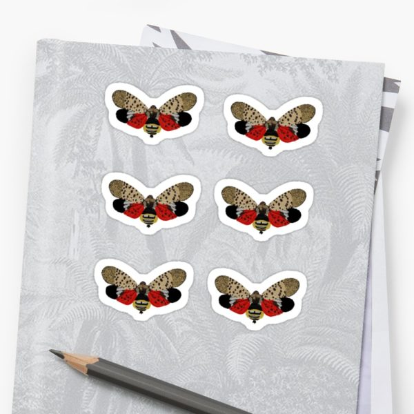 Spotted Lanternfly Stickers